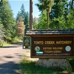 Tonto Creek Camp, at Payson AZ, site for our solar install outreach activity.